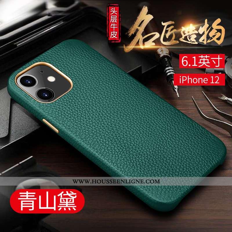 Coque iPhone 12 Tendance Protection Luxe Luxe Créatif Téléphone Portable Business Verte